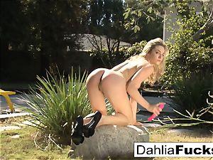 Dahlia's luxurious outdoor solo